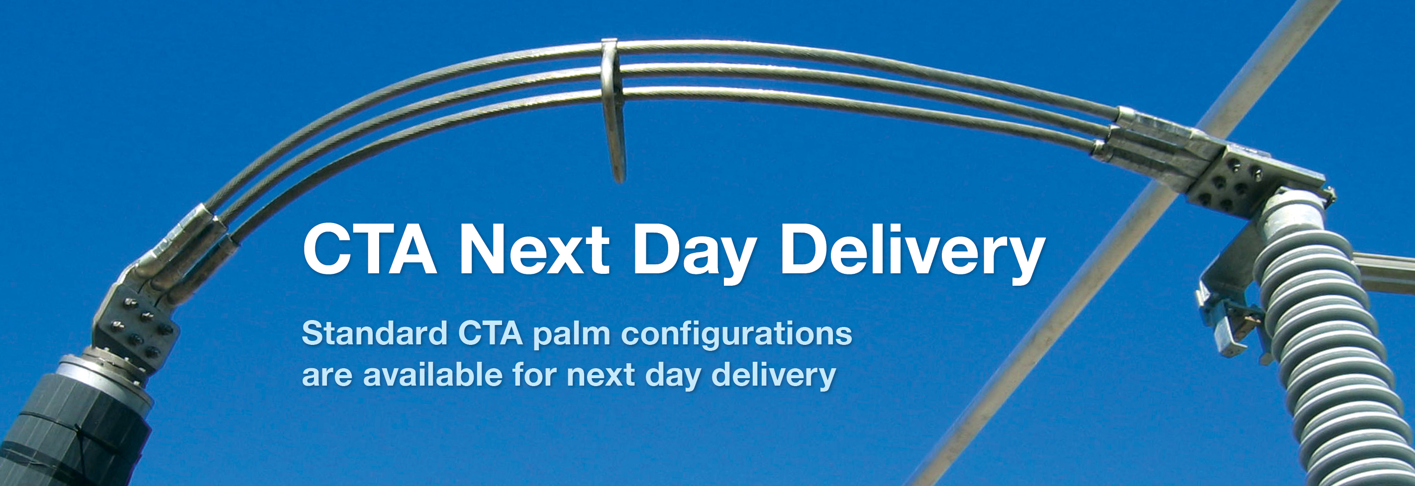 CTA Next Day Delivery