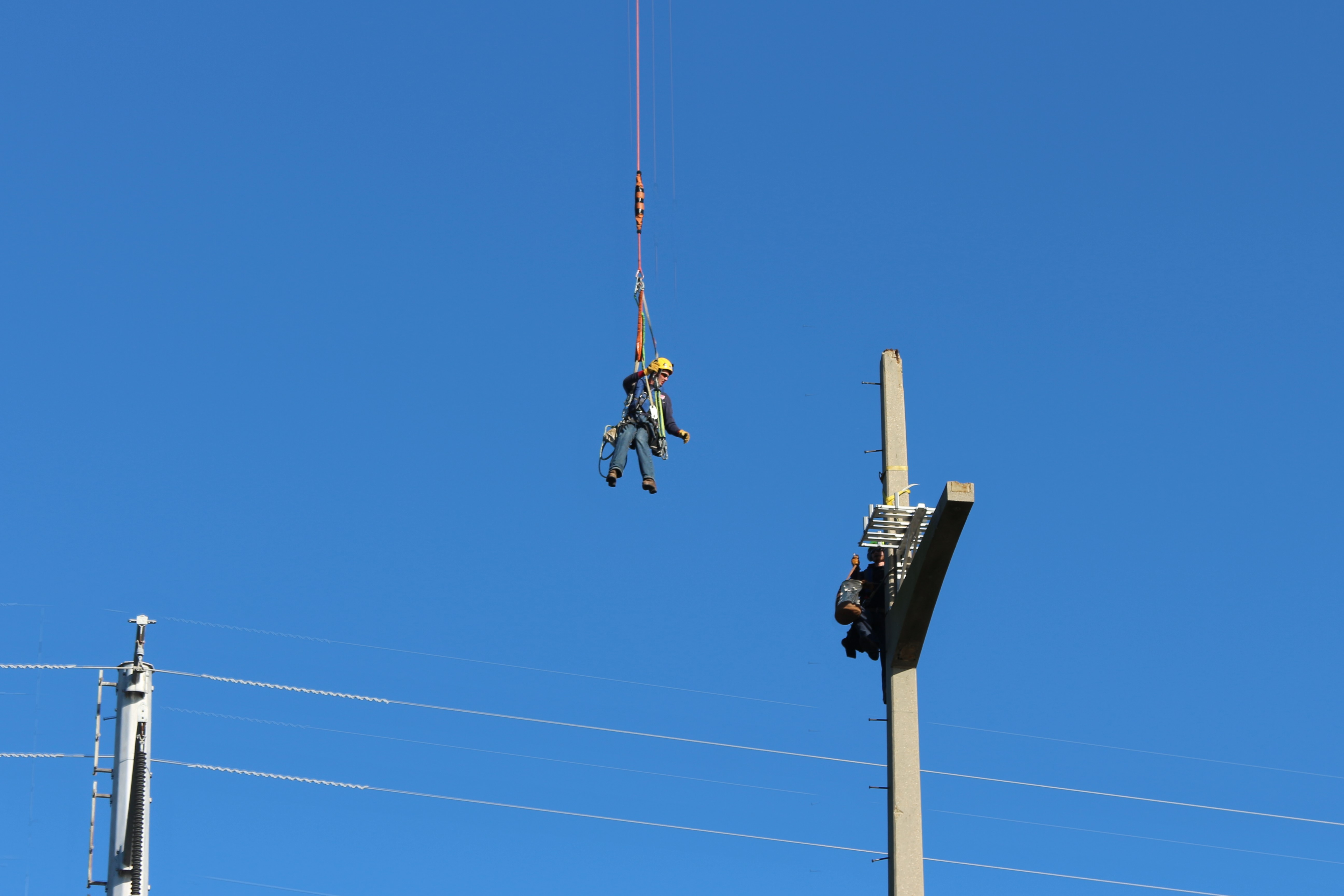 line workers install nesting platform - wildlife protection for utilities